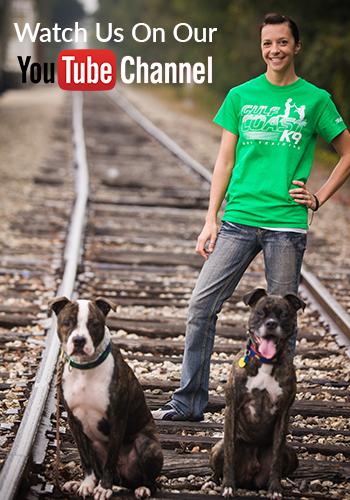 dog trainer SRQ